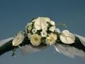 Virágok  (11) (1024x681)