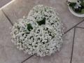 Virágok  (40) (1024x768)
