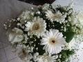Virágok  (42) (1024x768)