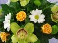 Virágok  (58) (1024x683)