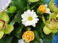Virágok  (62) (1024x683)