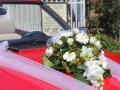 ford-taunus-cabrio-2017-05